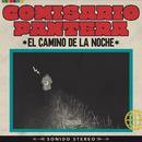El Camino De La Noche/Comisario Pantera