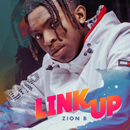 Link Up/Zion B