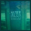 Shrike (Live At Windmill Lane Studios)/Hozier