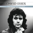 Silver Collection/David Essex