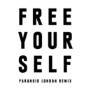 Free Yourself (Paranoid London Remix)/The Chemical Brothers