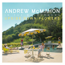Upside Down Flowers/Andrew McMahon in the Wilderness