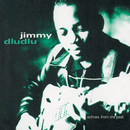 Echoes From The Past/Jimmy Dludlu