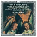 Bach, J.S.: Cantatas Nos. 8, 78 & 99/Joshua Rifkin, Julianne Baird, Allan Fast, Frank Kelly, Jan Opalach, The Bach Ensemble