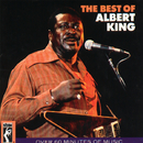 The Best Of Albert King/Albert King