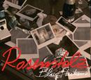 Blaue Flecken - Die Fanmixe (Remix Parts)/Rosenstolz