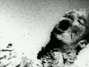 クリプトオーキッド/Marilyn Manson