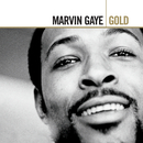 Gold/Marvin Gaye & SNBRN