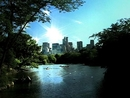 Summer Day (Central Park Video Clip)/Sheryl Crow