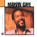 The Best Of Marvin Gaye/Marvin Gaye & SNBRN