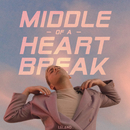 Middle Of A Heartbreak/Leland