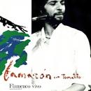 Flamenco Vivo (En Directo / Remastered) (feat. Tomatito)/Camarón De La Isla