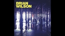 The Last Song (Audio)/Brian Wilson