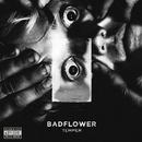 Temper/Badflower