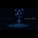 The Ocean/WALLIS BIRD