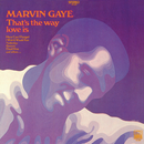 That's The Way Love Is/Marvin Gaye & SNBRN