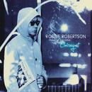 Fear of Falling (Radio Edit)/Robbie Robertson