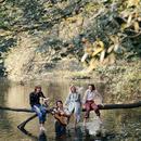 Wild Life/Paul McCartney & Wings