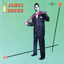 Roots Of A Revolution/James Brown