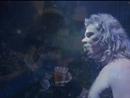 Wherever I May Roam (eVideo)/Metallica