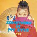 Something In My Eyes/May Lan
