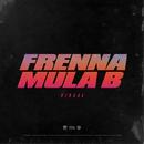 Viraal (feat. Mula B)/Frenna