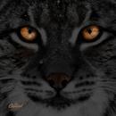 Ilves (feat. EMO Ensemble)/Anssi Kela