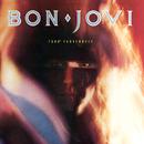 7800 Fahrenheit/Bon Jovi
