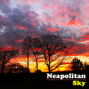 Neapolitan Sky/The Avett Brothers