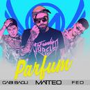 Parfum (feat. Gabi Bagu, FED)/Matteo