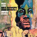 The Big Bill Broonzy Story/Big Bill Broonzy