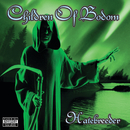 Hatebreeder/CHILDREN OF BODOM