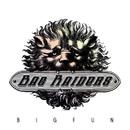 Big Fun/Bag Raiders
