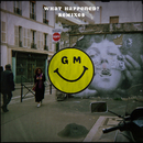 What Happened? (Remixes)/Gilligan Moss