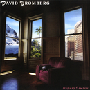 Long Way From Here/David Bromberg