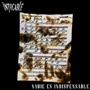 Nadie Es Indispensable/Intocable