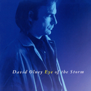Eye Of The Storm/David Olney