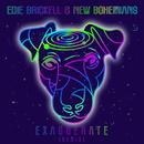 Exaggerate (Remix)/Edie Brickell & New Bohemians