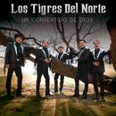 Un Consentido De Dios/Los Tigres Del Norte