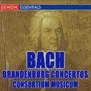 Bach: The Complete Brandenburg Concertos/Consortium Musicum