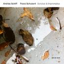 Franz Schubert: Sonatas & Impromptus/András Schiff