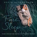Pure Sleep/David Arkenstone
