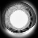 Moonlight/Disclosure