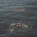 Not Waving, But Drowning/Loyle Carner