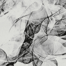 re:member – string quartets/Ólafur Arnalds