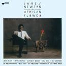 The African Flower (The Music Of Duke Ellington & Billy Strayhorn)/James Newton
