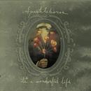 It's A Wonderful Life/Sparklehorse