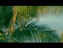 Samba Pra Vinícius/Toquinho, Chico Buarque