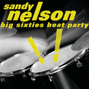 Big Sixties Beat Party!/Sandy Nelson