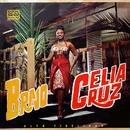 Bravo/Celia Cruz